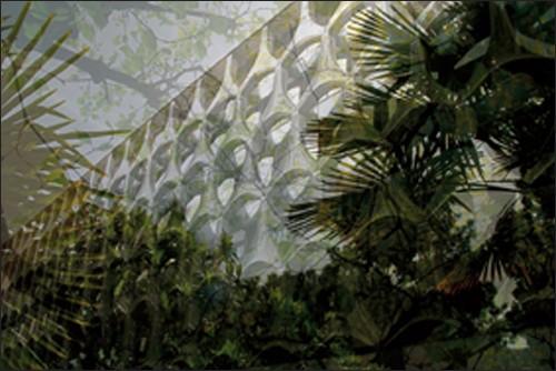 Végétaux 18, 2008
