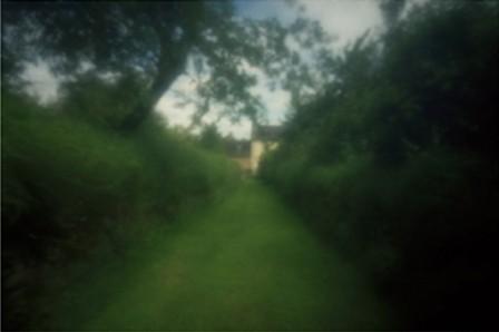 Allée verger, 2008