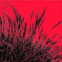 Grass (red), 2011