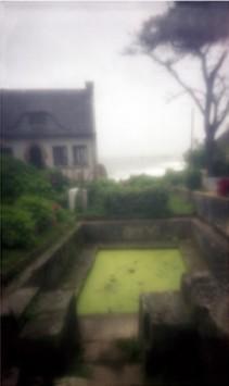 Marée verte, 2008